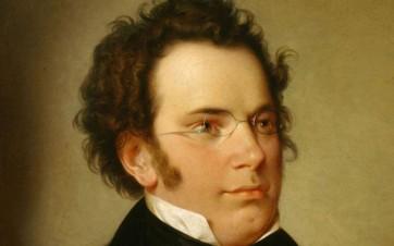 Schubert-xlarge