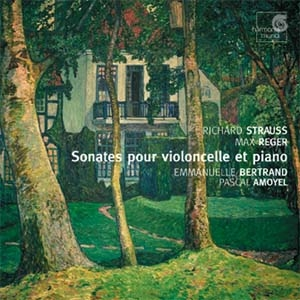 Emmanuelle Bertrand, Violoncelle post-romantique