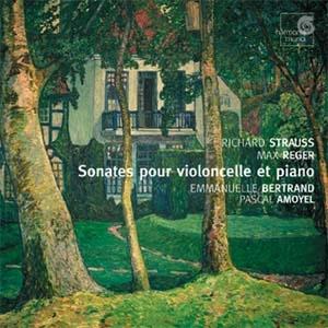 Emmanuelle Bertrand, Violoncelle post-romantique