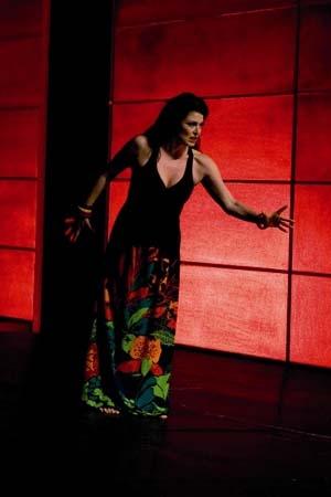 Histoires tragiques d'opéras