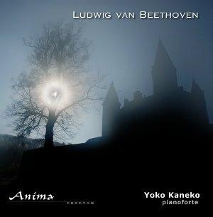 Sonates de Beethoven au pianoforte