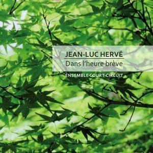 Jean-Luc Hervé, territoires du son