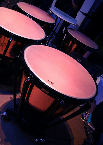 Timbales par Beautyredefined (license creative commons)