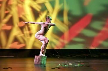danseurs choregraphes onp 2