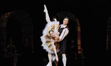 Don Quichotte ete de la danse2013