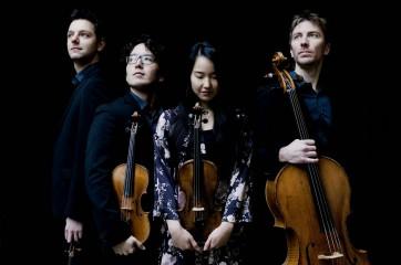 quatuor Ellipse2