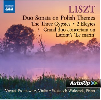 liszt_violon_piano
