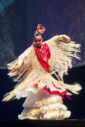 Ballet Flamenco de Andalucia (8)