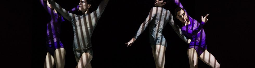 L'anatomie de la sensationPour Francis Bacon Wayne Mcgregor