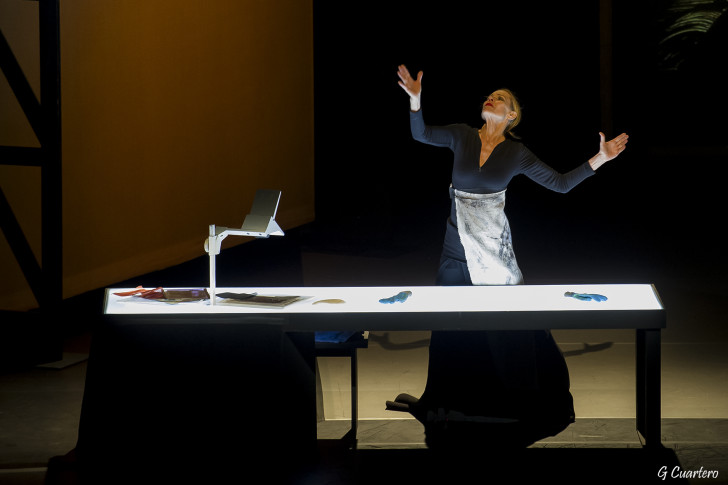 Dialogue with Rothko - Festival Aujourd'hui Musiques 2015 © G. Cuartero (5)