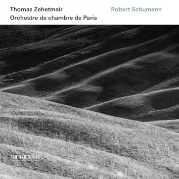 Schumann_zehetmair_ECM