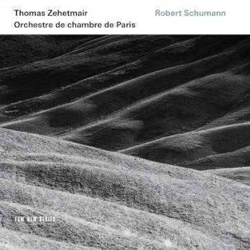 Schumann_zehetmair_ECM