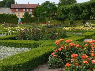 rose-garden-893882_960_720