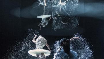 a-swan-lake-by-alexander-ekman-dagbladet