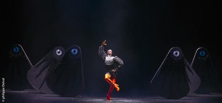 ballet_royal_de_la_nuit_c_philippe_delval_10