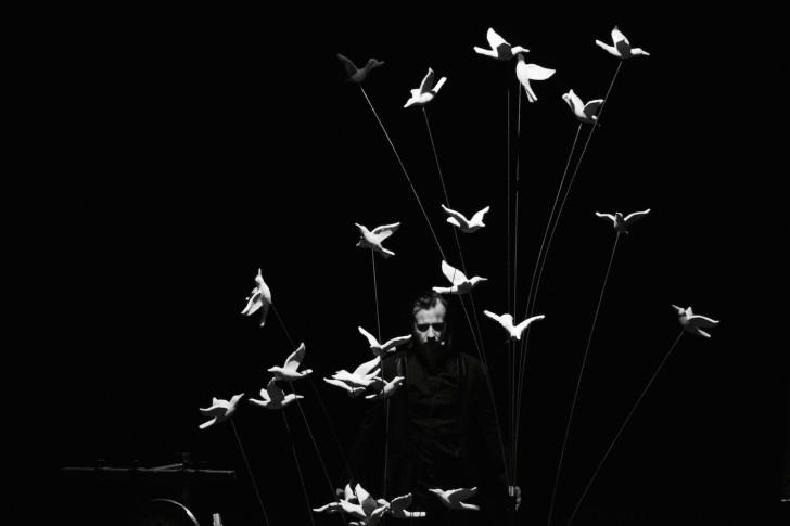 La Conférence des oiseaux Lucas Herault (c)2e2m_IMG_5331