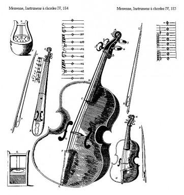 Violon 8