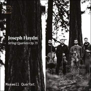 Haydn Maxwell
